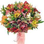Цветы по виду - цветы и букеты на 7roz.kiev.ua