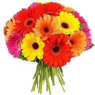 Bouquet of 21 gerbera flowers - flowers and bouquets on 7roz.kiev.ua