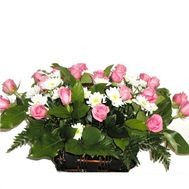 Basket of 21 roses and 6 chrysanthemums - flowers and bouquets on 7roz.kiev.ua