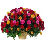 Basket of 101 different colored roses - flowers and bouquets on 7roz.kiev.ua