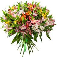 Букет из 35 альстромерий - цветы и букеты на 7roz.kiev.ua