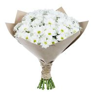 Bouquet of 15 chrysanthemums - flowers and bouquets on 7roz.kiev.ua