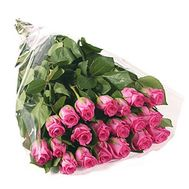 Bouquet of 17 imported roses - flowers and bouquets on 7roz.kiev.ua