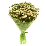 Bouquet of 25 bush roses - flowers and bouquets on 7roz.kiev.ua
