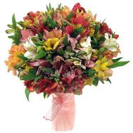 Bouquet of 31 multi-colored alstroemerias - flowers and bouquets on 7roz.kiev.ua
