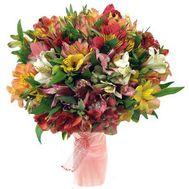 Букет из 31 разноцветной альстромерии - цветы и букеты на 7roz.kiev.ua
