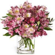 Букет из 15 розовых альстромерий - цветы и букеты на 7roz.kiev.ua