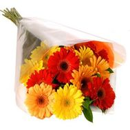 Bouquet of flowers of 13 different colored gerberas - flowers and bouquets on 7roz.kiev.ua