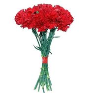Букет из 17 гвоздик - цветы и букеты на 7roz.kiev.ua
