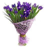 Букет из 25 ирисов - цветы и букеты на 7roz.kiev.ua