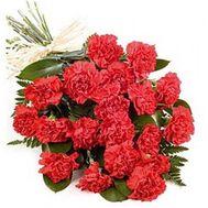 Букет із 19 гвоздик - цветы и букеты на 7roz.kiev.ua