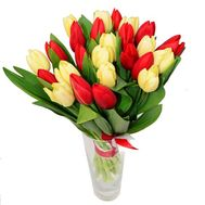 Bouquet of 25 tulips - flowers and bouquets on 7roz.kiev.ua