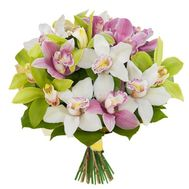 Bouquet of orchids - flowers and bouquets on 7roz.kiev.ua