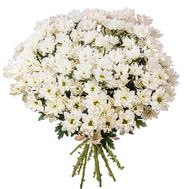 Bouquet of 13 chamomiles - flowers and bouquets on 7roz.kiev.ua