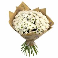 Bouquet of 25 chamomile chrysanthemums - flowers and bouquets on 7roz.kiev.ua