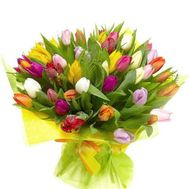 Bouquet of 75 multi-colored tulips - flowers and bouquets on 7roz.kiev.ua