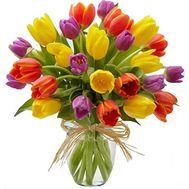 Букет из 25 тюльпанов - цветы и букеты на 7roz.kiev.ua