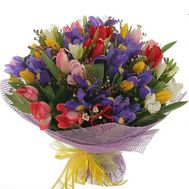 Bouquet of 21 tulips and 14 irises - flowers and bouquets on 7roz.kiev.ua