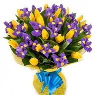 Bouquet of 25 tulips and 20 irises - flowers and bouquets on 7roz.kiev.ua
