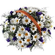 Basket of 13 chrysanthemums - flowers and bouquets on 7roz.kiev.ua