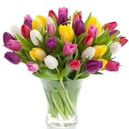 Bouquet of 55 Tulips - flowers and bouquets on 7roz.kiev.ua