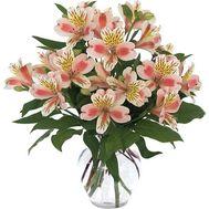 Букет из 9 розовых альстромерий - цветы и букеты на 7roz.kiev.ua