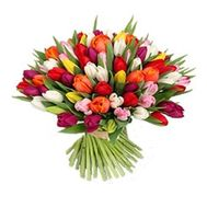 Bouquet of flowers from 101 tulips - flowers and bouquets on 7roz.kiev.ua