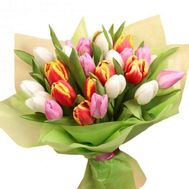Bouquet of 27 multi-colored tulips - flowers and bouquets on 7roz.kiev.ua