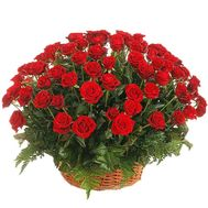 Basket of 55 red roses - flowers and bouquets on 7roz.kiev.ua