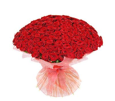 """""""Букет из 151 красной розы"""" в интернет-магазине цветов 7roz.kiev.ua"""