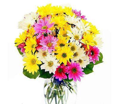 """""""Букет из 9 хризантем"""" в интернет-магазине цветов 7roz.kiev.ua"""