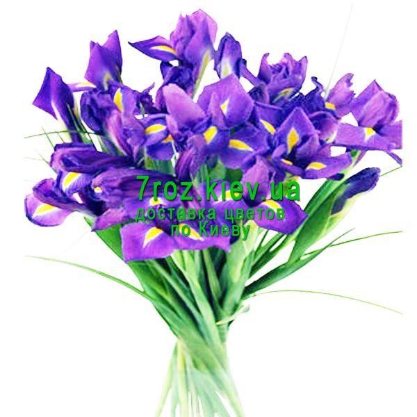 Купить цветы магазин ирисы в киев, для невесты