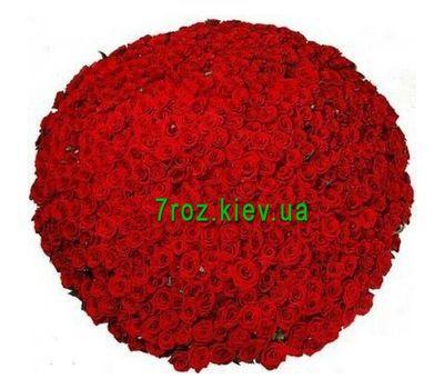 """""""Букет из 1001 розы"""" в интернет-магазине цветов 7roz.kiev.ua"""
