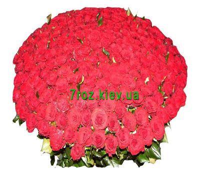 """""""Букет из 501 розы"""" в интернет-магазине цветов 7roz.kiev.ua"""
