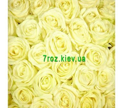 """To select the number of roses click on the photo"" in the online flower shop 7roz.kiev.ua"