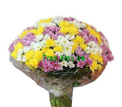 """""""Букет из 51 хризантемы"""" в интернет-магазине цветов 7roz.kiev.ua"""