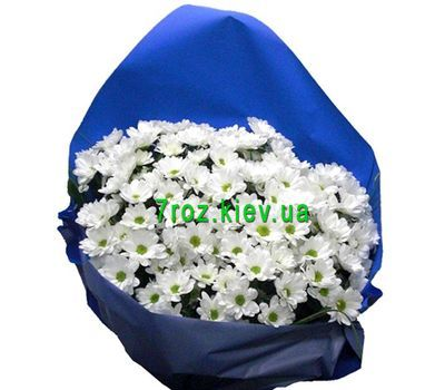 """Bouquet of 11 chamomile chrysanthemums"" in the online flower shop 7roz.kiev.ua"