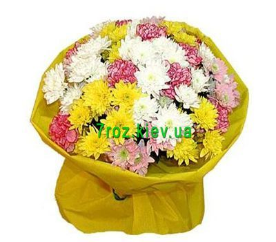 """""""Bouquet of 10 chrysanthemums and 9 carnations"""" in the online flower shop 7roz.kiev.ua"""