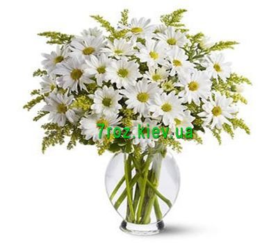 """Bouquet of flowers from 11 chamomile chrysanthemums"" in the online flower shop 7roz.kiev.ua"