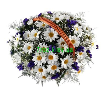 """Basket of 13 chrysanthemums"" in the online flower shop 7roz.kiev.ua"