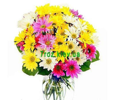 """Bouquet of 9 chrysanthemums"" in the online flower shop 7roz.kiev.ua"