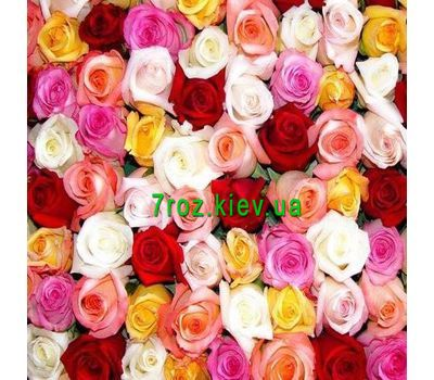 """""""To select the number of roses click on the photo"""" in the online flower shop 7roz.kiev.ua"""