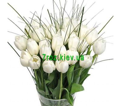 """Bouquet of 35 white tulips"" in the online flower shop 7roz.kiev.ua"