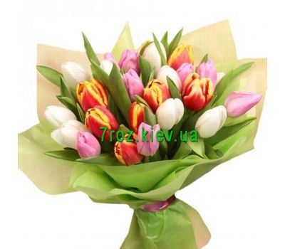 """Bouquet of 27 multi-colored tulips"" in the online flower shop 7roz.kiev.ua"